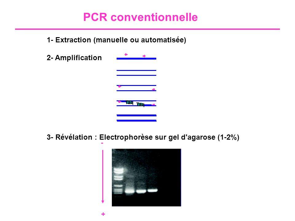 PCR conventionnelle 1- Extraction (manuelle ou automatisée)