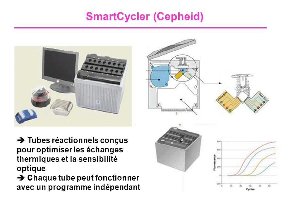 SmartCycler (Cepheid)