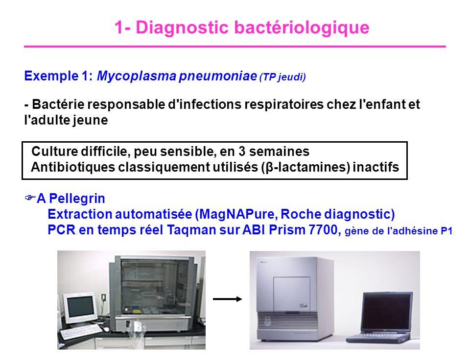 1- Diagnostic bactériologique