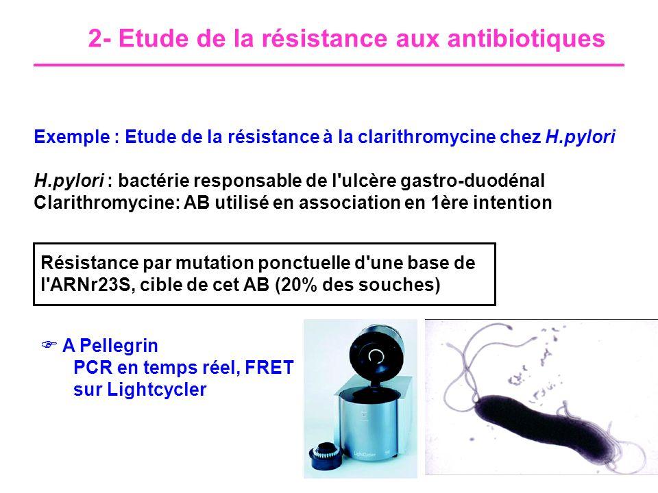 2- Etude de la résistance aux antibiotiques