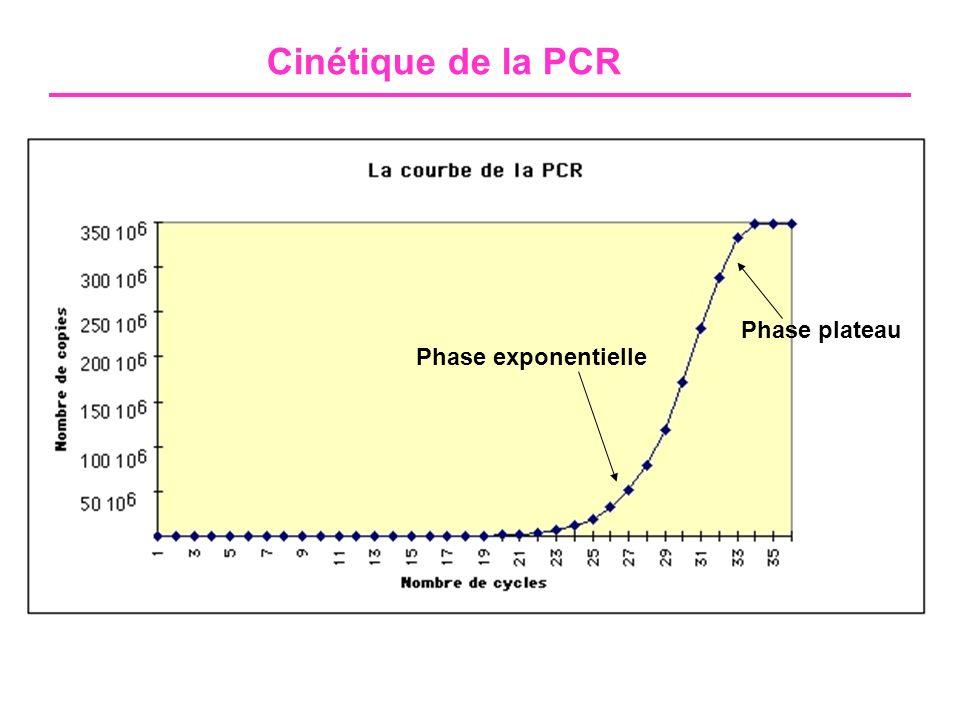 Cinétique de la PCR Phase plateau Phase exponentielle