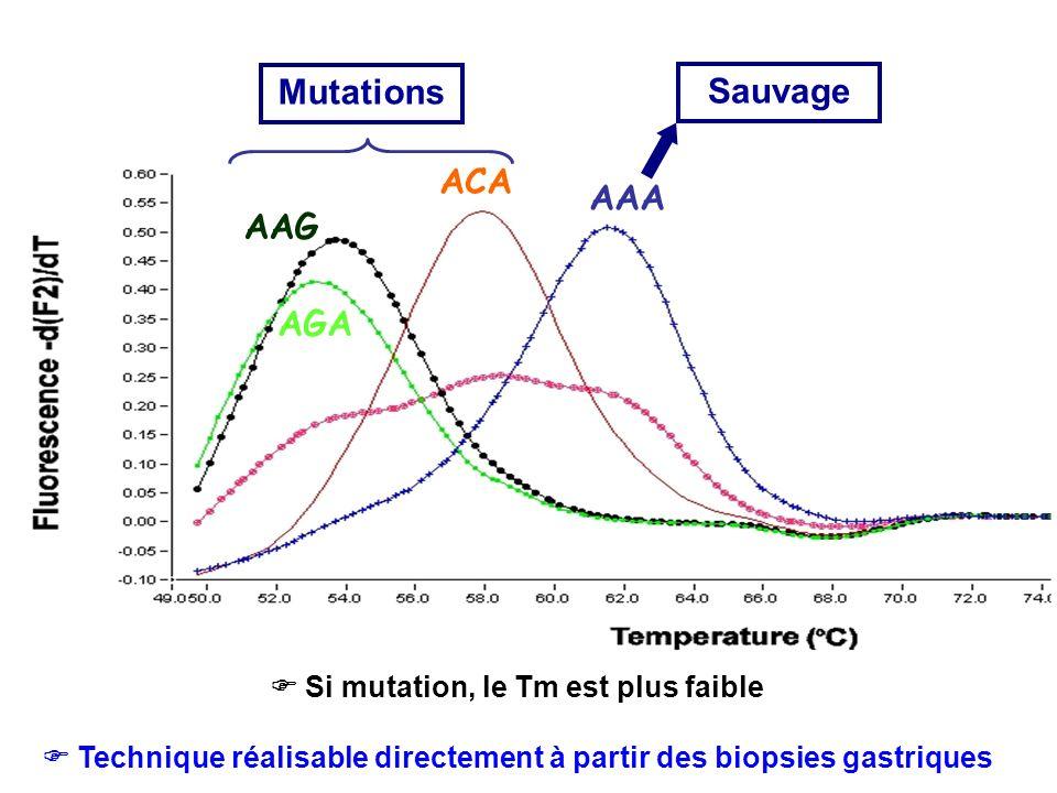 Mutations Sauvage ACA AAA AAG AGA  Si mutation, le Tm est plus faible