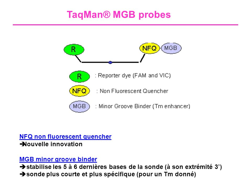 TaqMan® MGB probes NFQ non fluorescent quencher Nouvelle innovation
