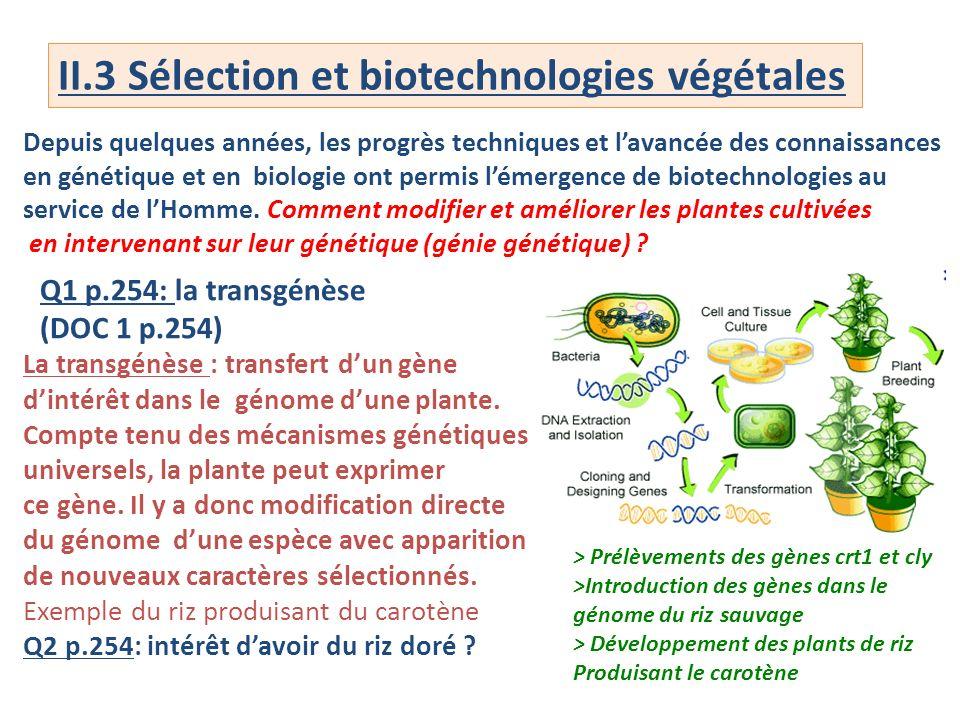 II.3 Sélection et biotechnologies végétales
