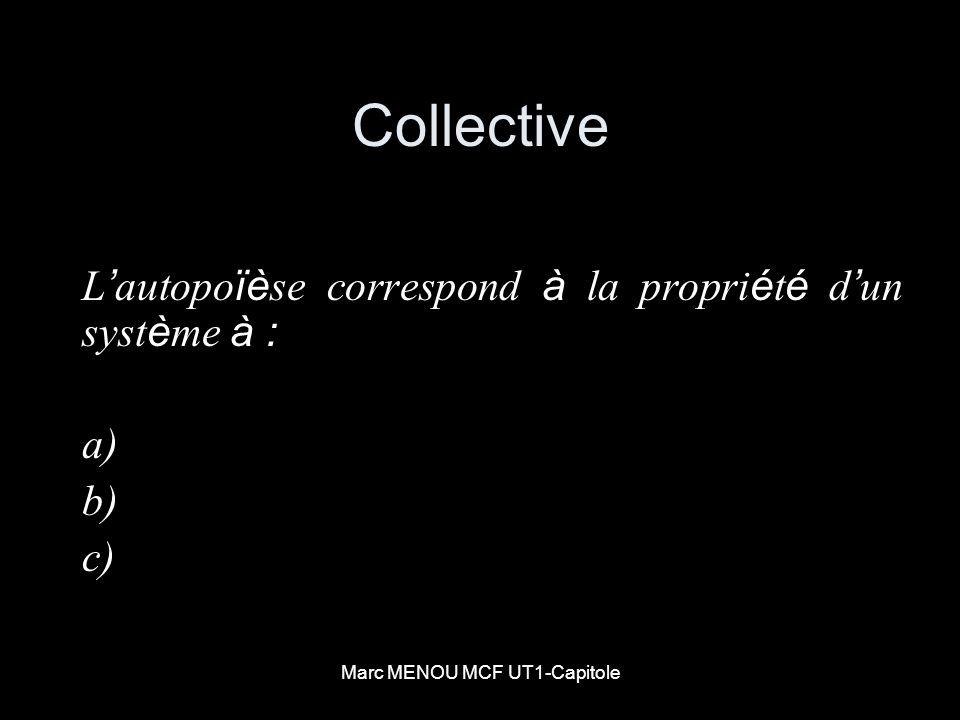 Marc MENOU MCF UT1-Capitole