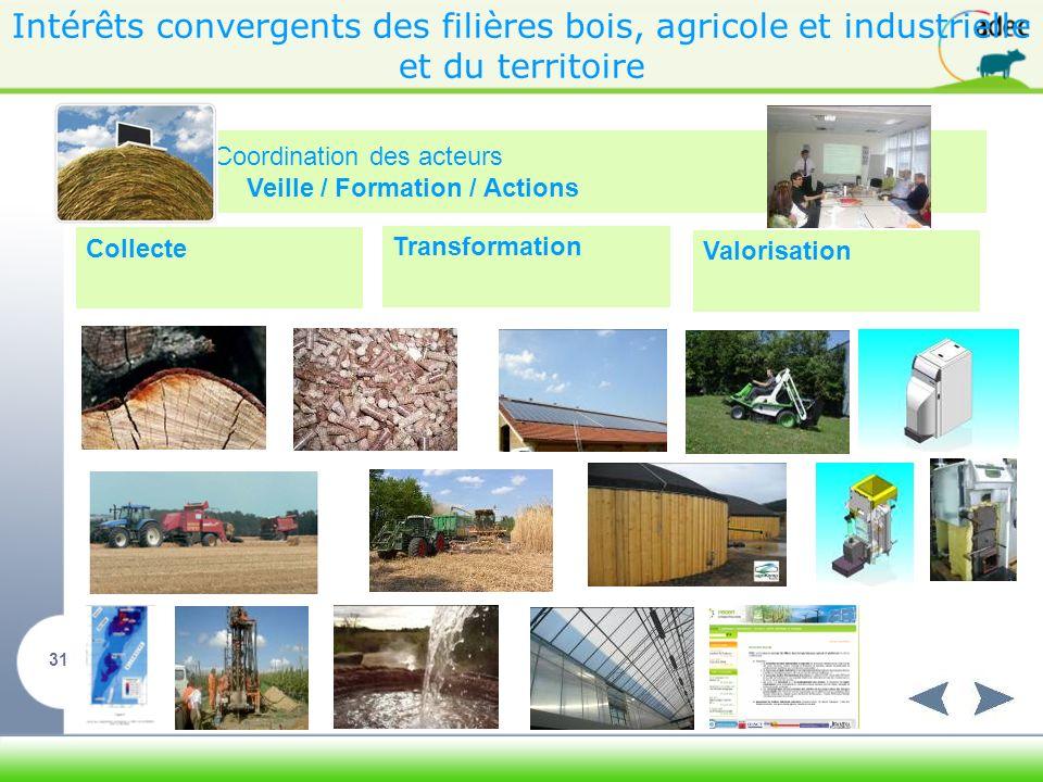 Intérêts convergents des filières bois, agricole et industrielle et du territoire