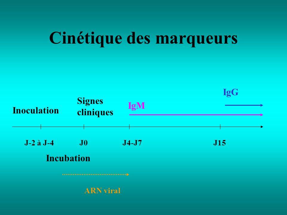 Cinétique des marqueurs