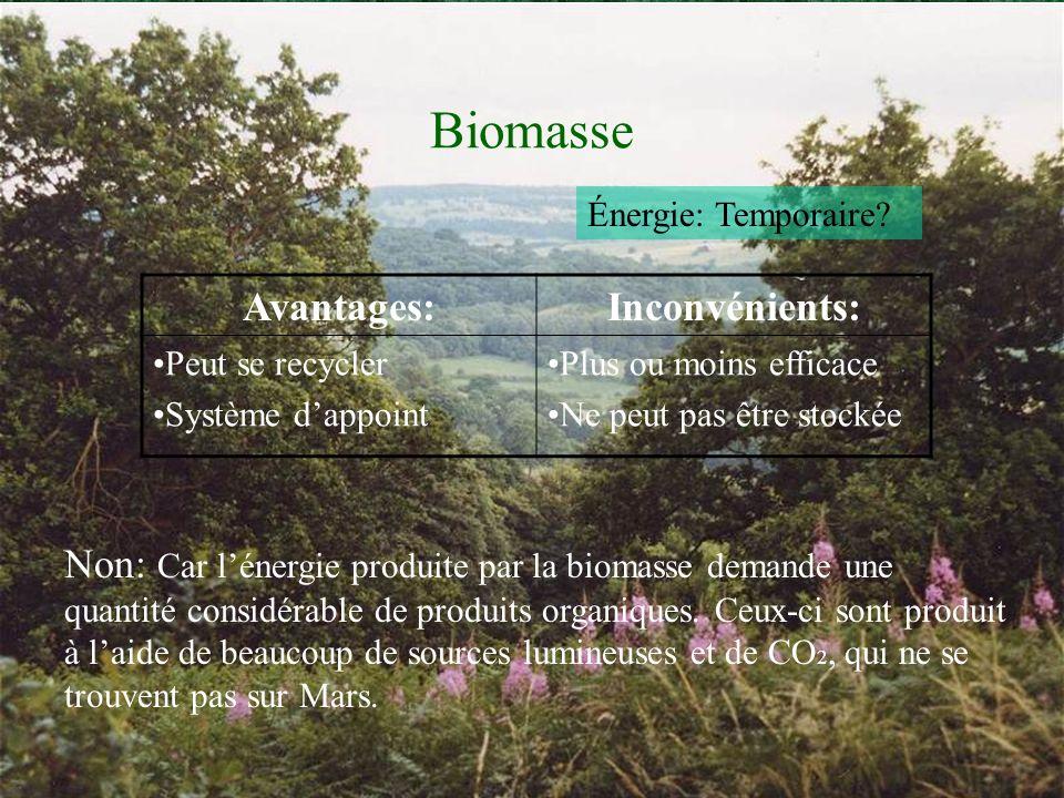 Biomasse Avantages: Inconvénients:
