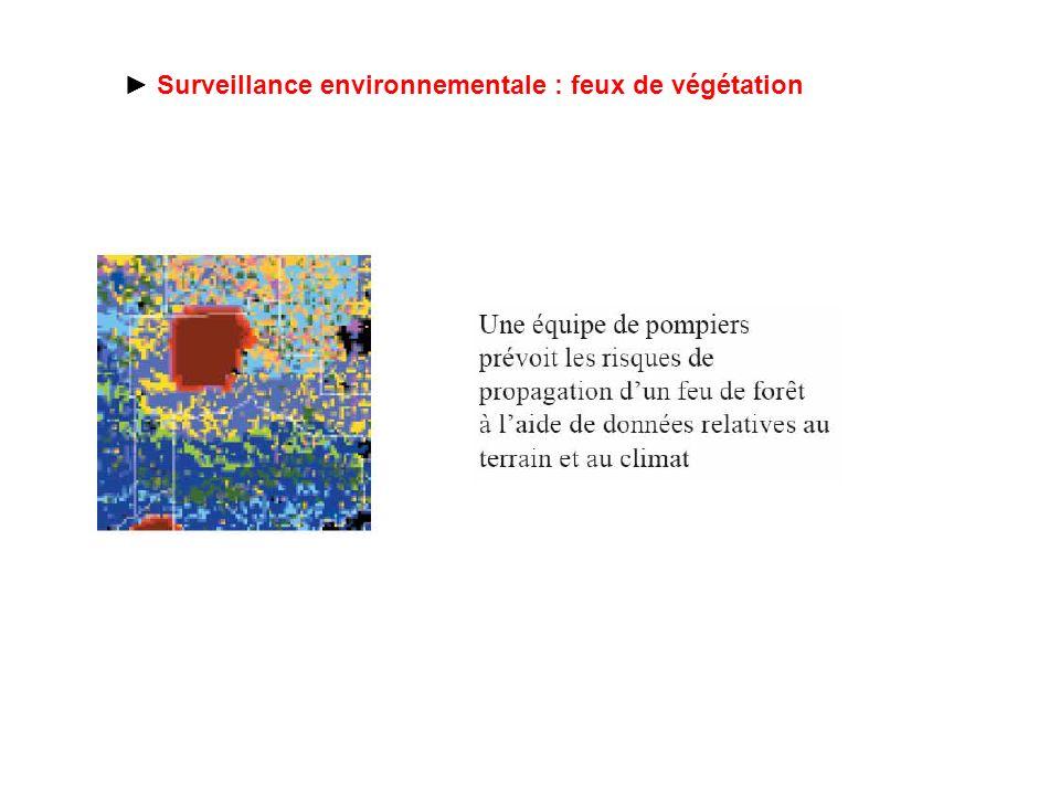► Surveillance environnementale : feux de végétation