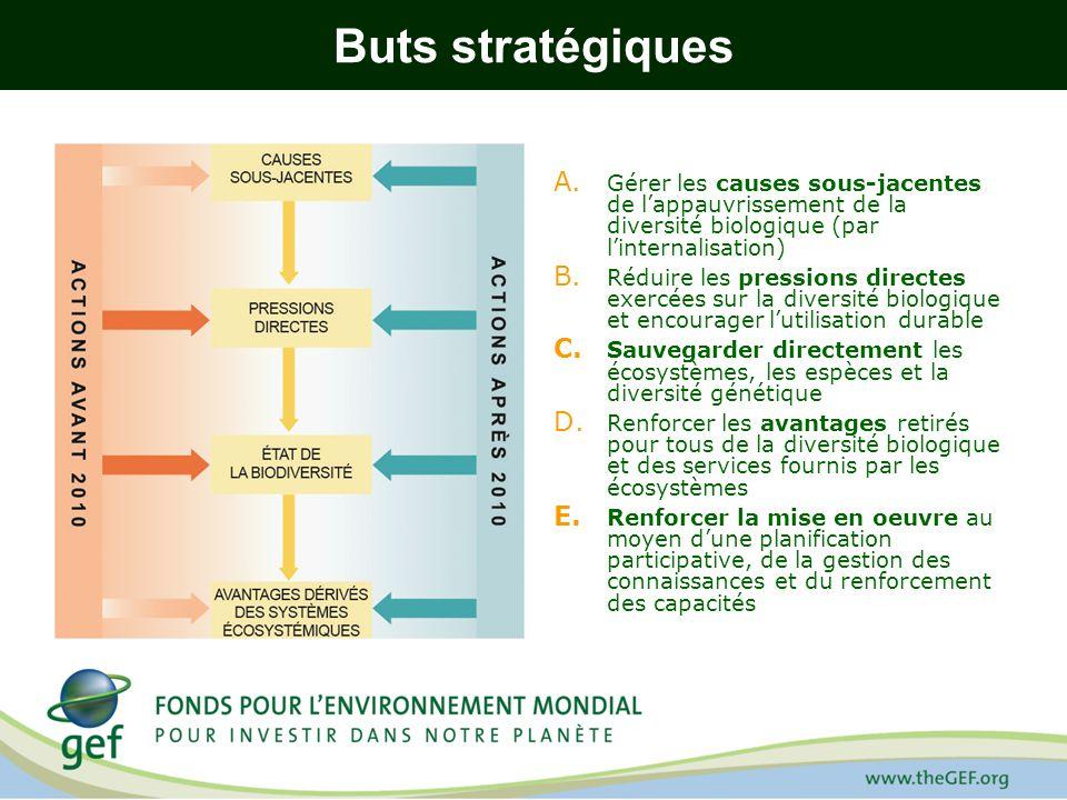 Buts stratégiques Gérer les causes sous-jacentes de l'appauvrissement de la diversité biologique (par l'internalisation)