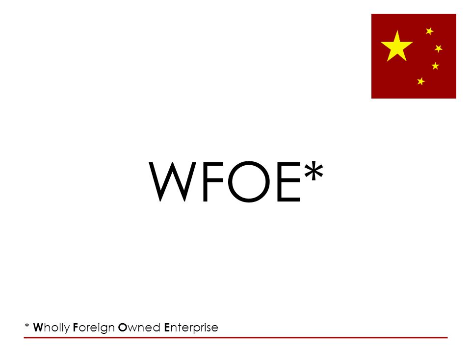 WFOE* * Wholly Foreign Owned Enterprise