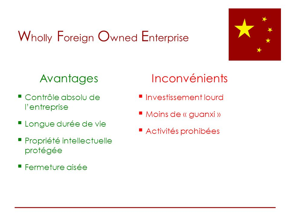 Wholly Foreign Owned Enterprise