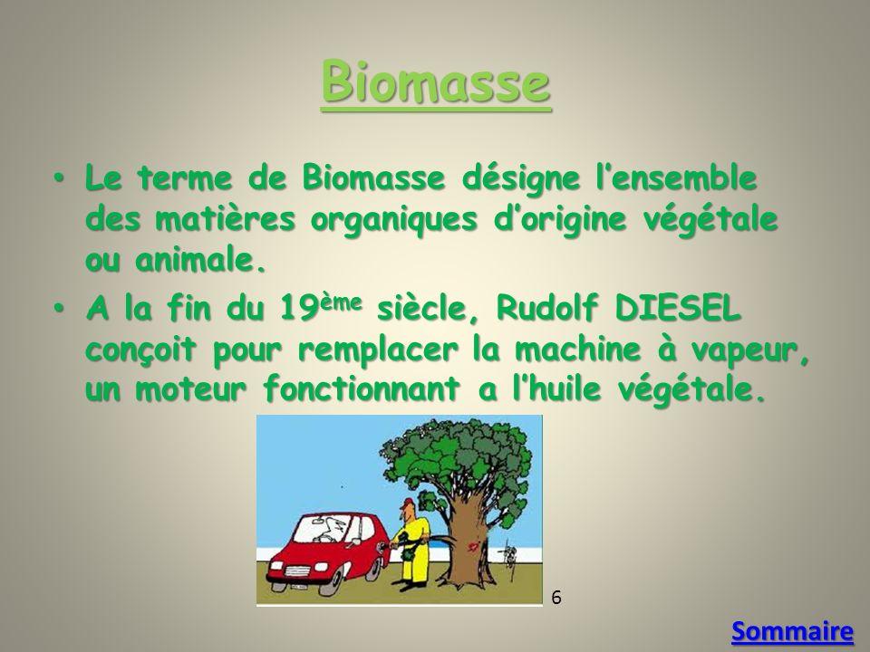 Biomasse Le terme de Biomasse désigne l'ensemble des matières organiques d'origine végétale ou animale.