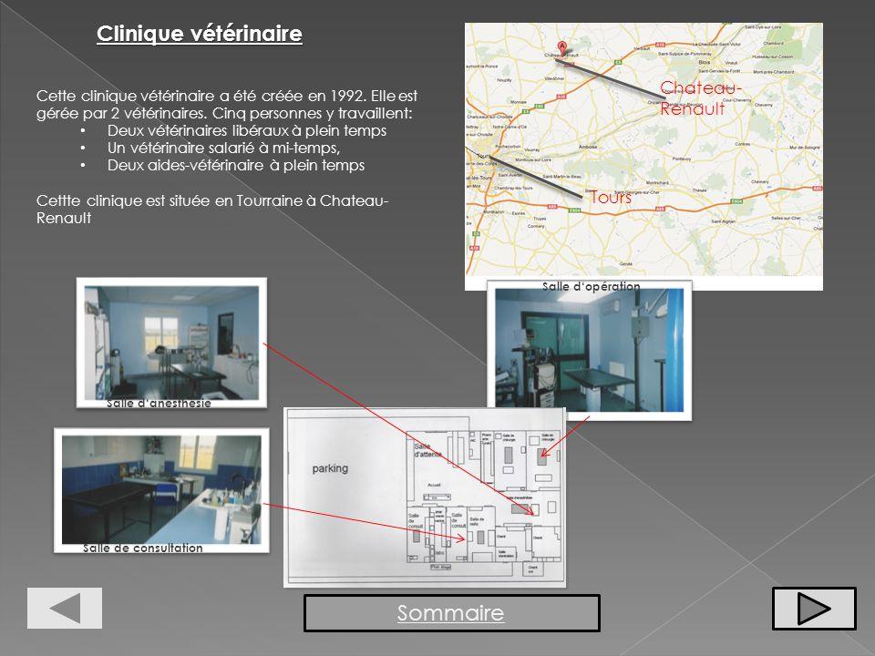 Clinique vétérinaire Sommaire Chateau-Renault Tours