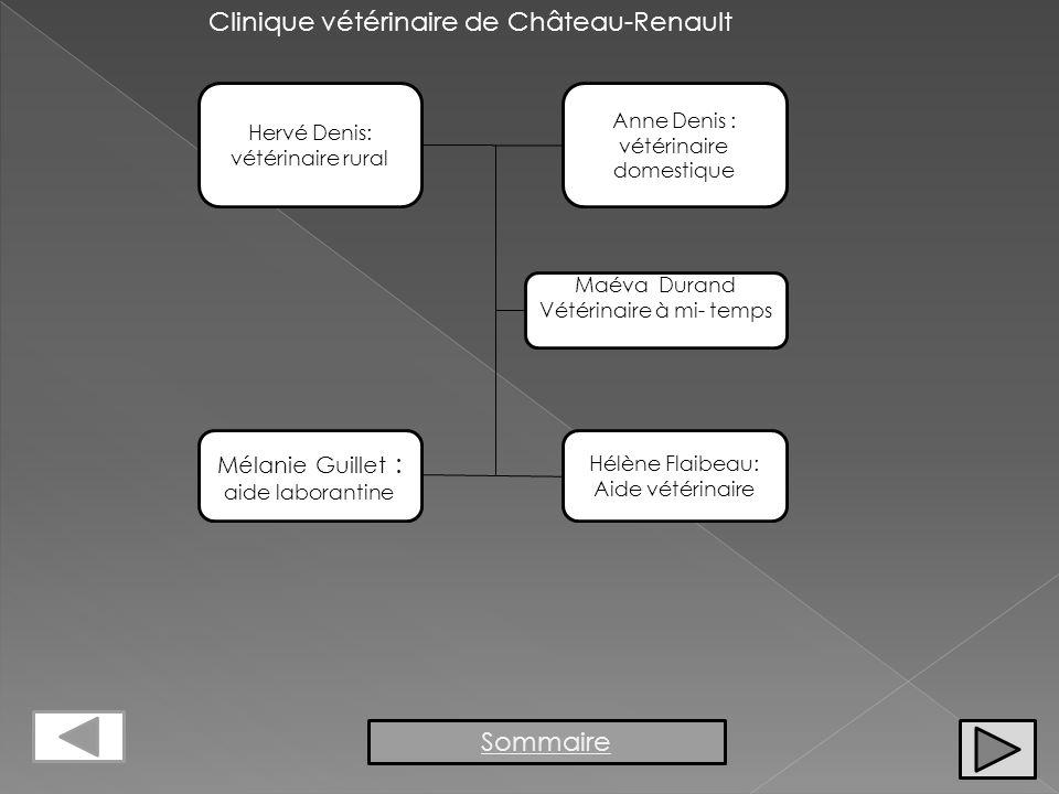 Clinique vétérinaire de Château-Renault