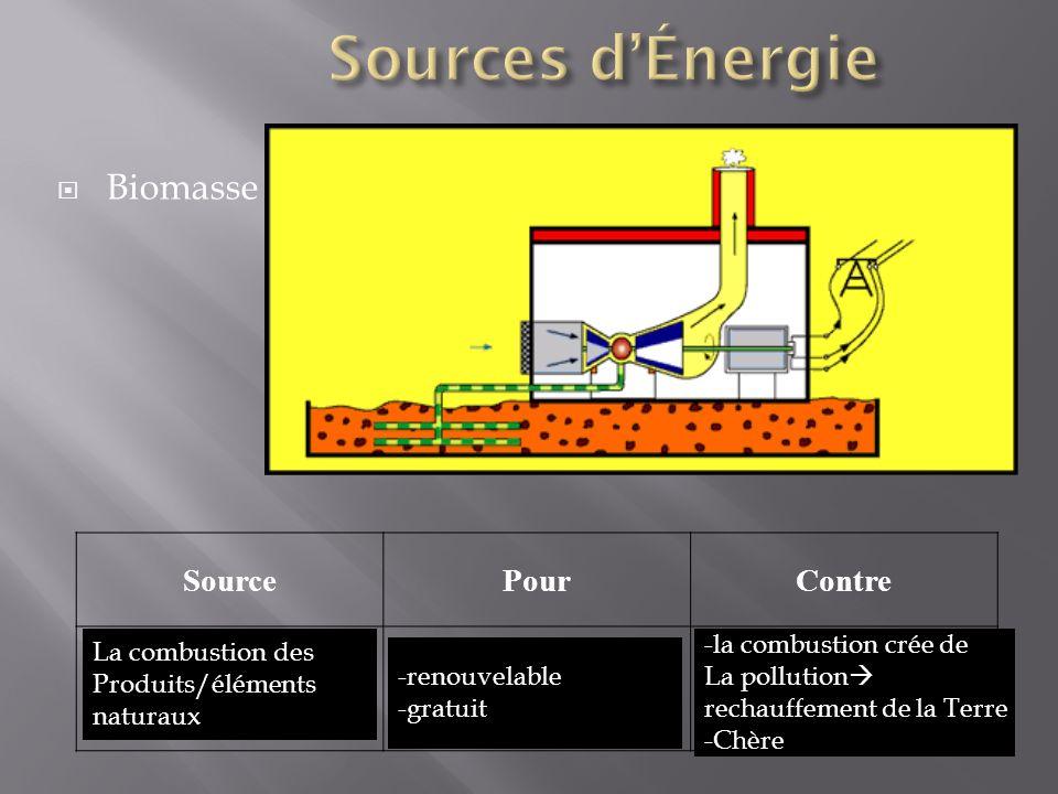 Sources d'Énergie Biomasse Source Pour Contre La combustion des