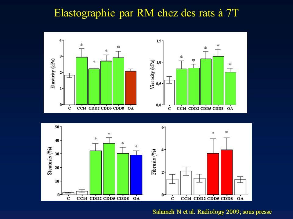 Elastographie par RM chez des rats à 7T