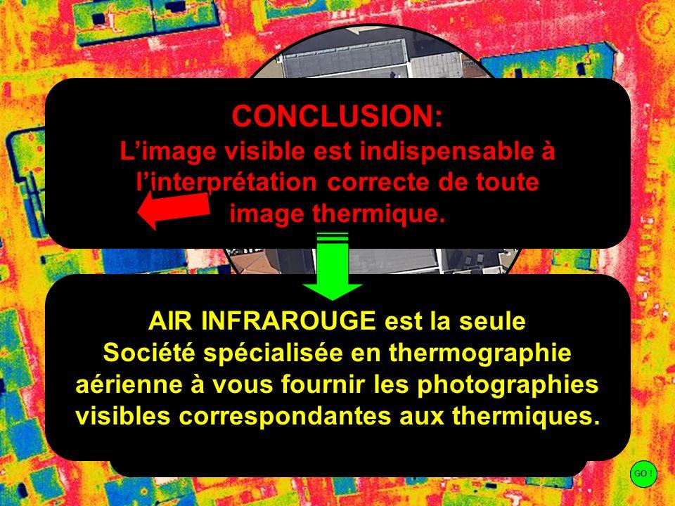 CONCLUSION: L'image visible est indispensable à