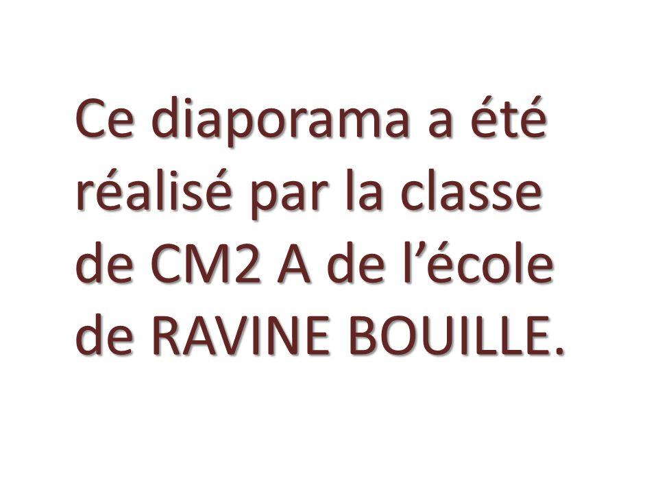 Ce diaporama a été réalisé par la classe de CM2 A de l'école de RAVINE BOUILLE.