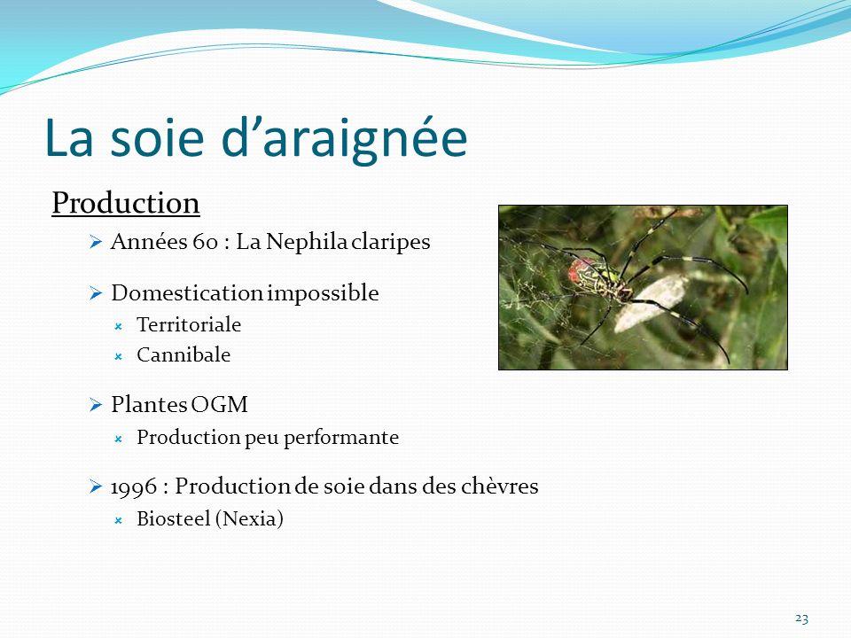 La soie d'araignée Production Années 60 : La Nephila claripes