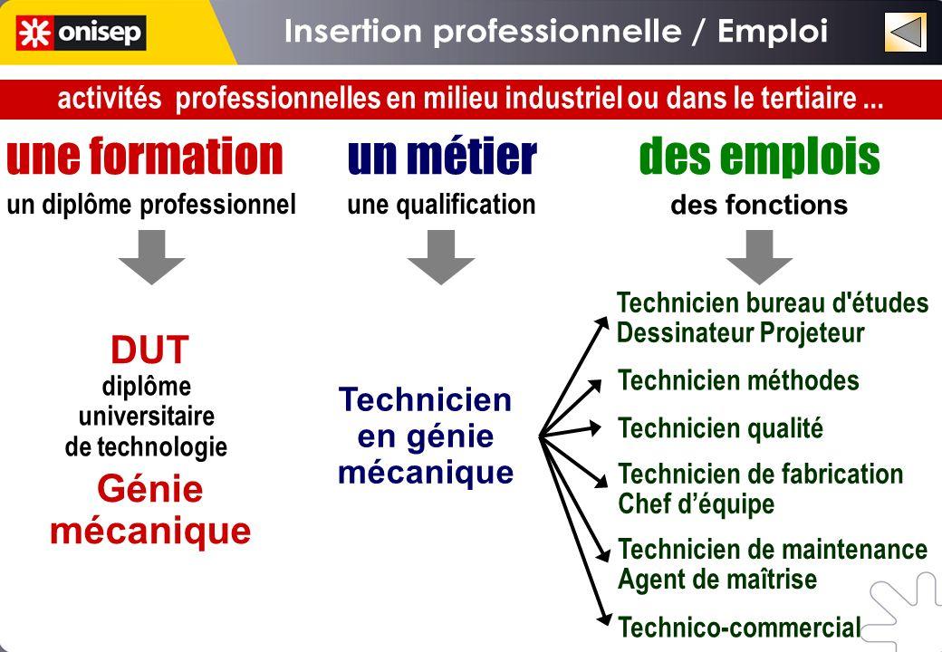 Insertion professionnelle / Emploi un diplôme professionnel