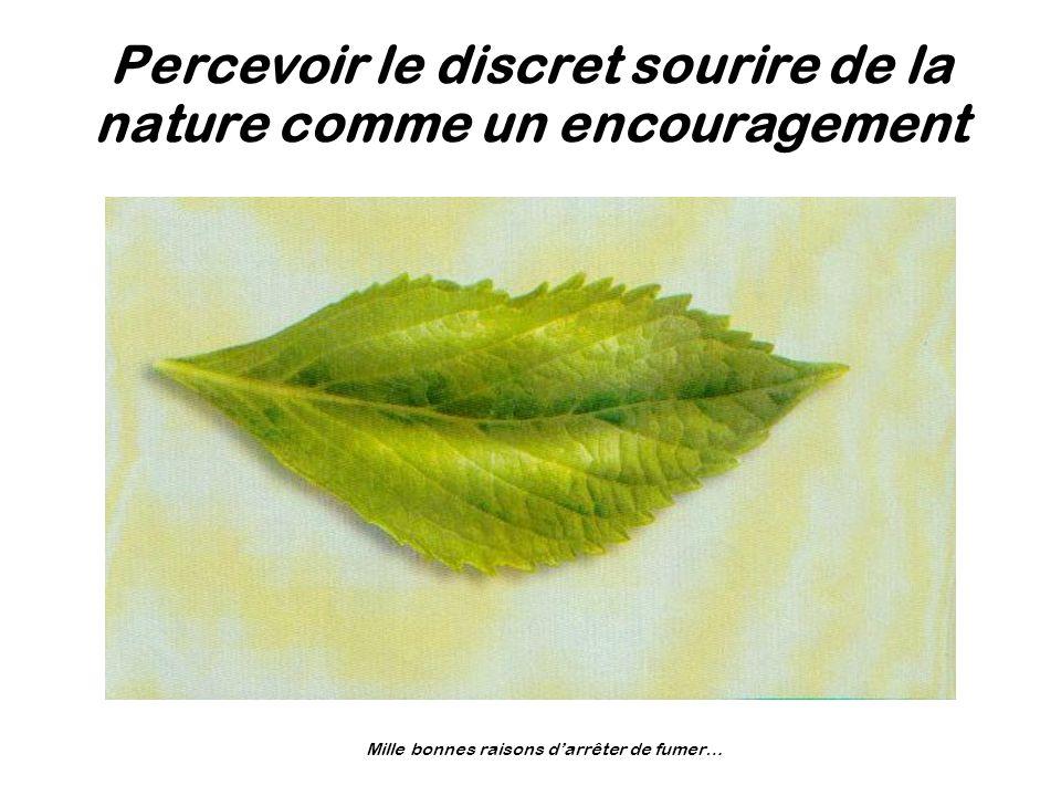 Percevoir le discret sourire de la nature comme un encouragement