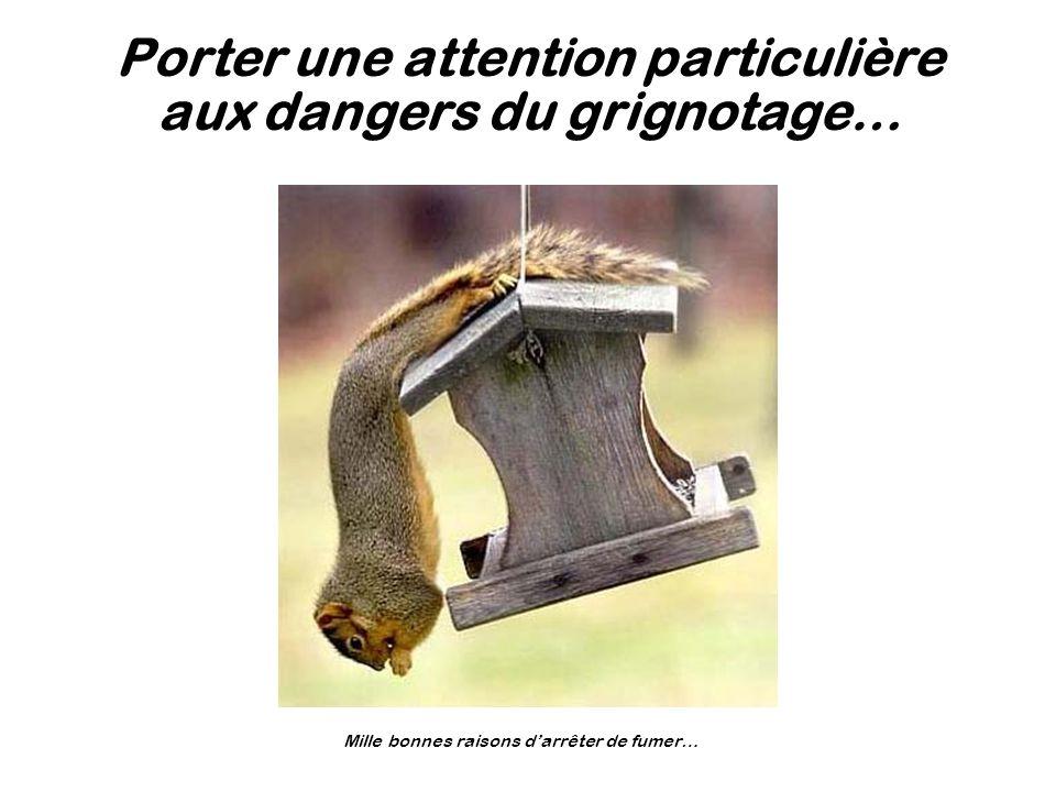 Porter une attention particulière aux dangers du grignotage…