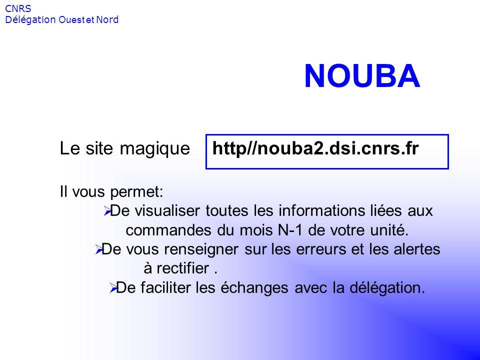 NOUBA Le site magique http//nouba2.dsi.cnrs.fr Il vous permet: