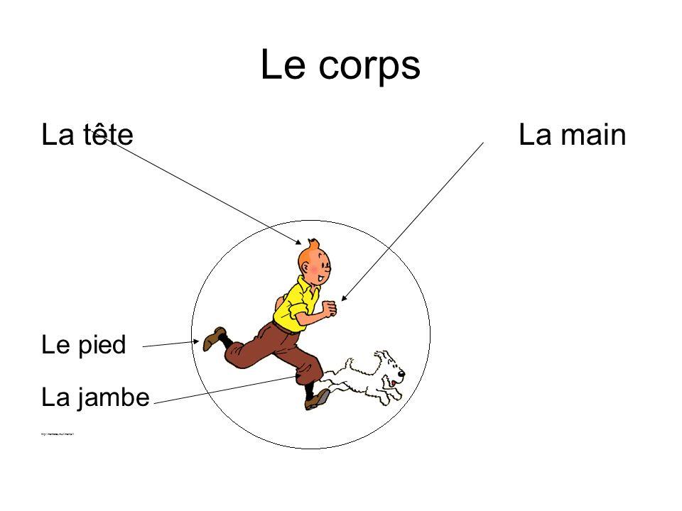 Le corps La tête La main Le pied La jambe http://membres.multimania.fr