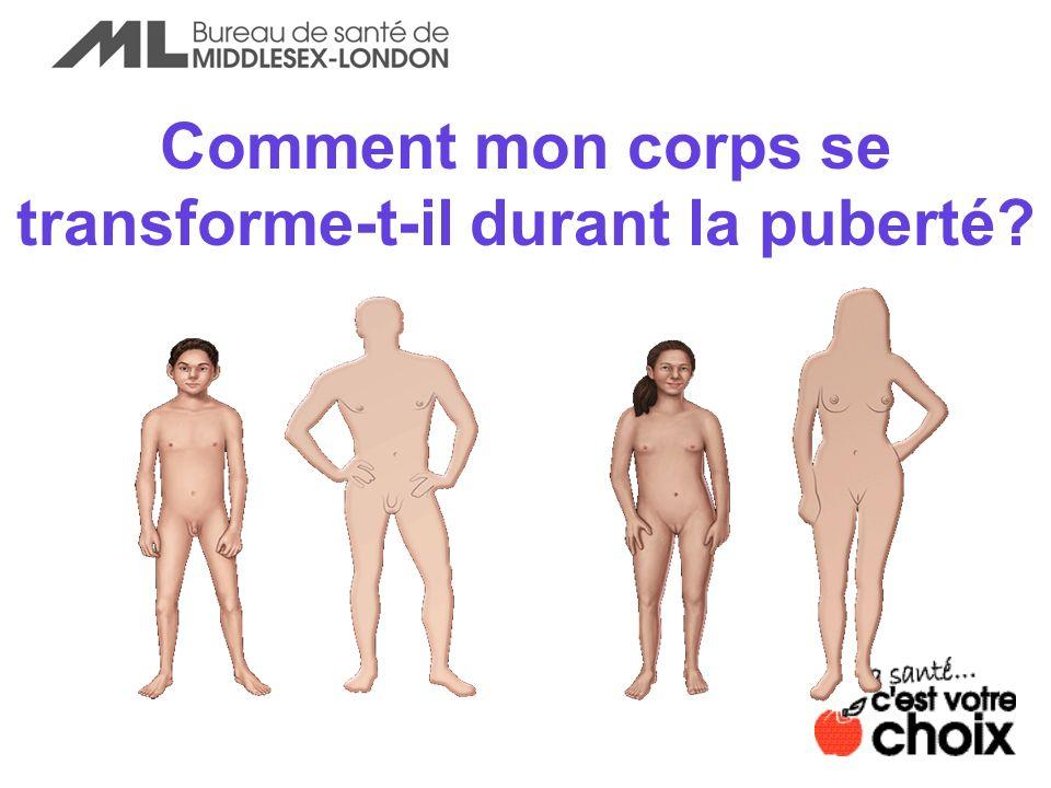 Comment mon corps se transforme-t-il durant la puberté