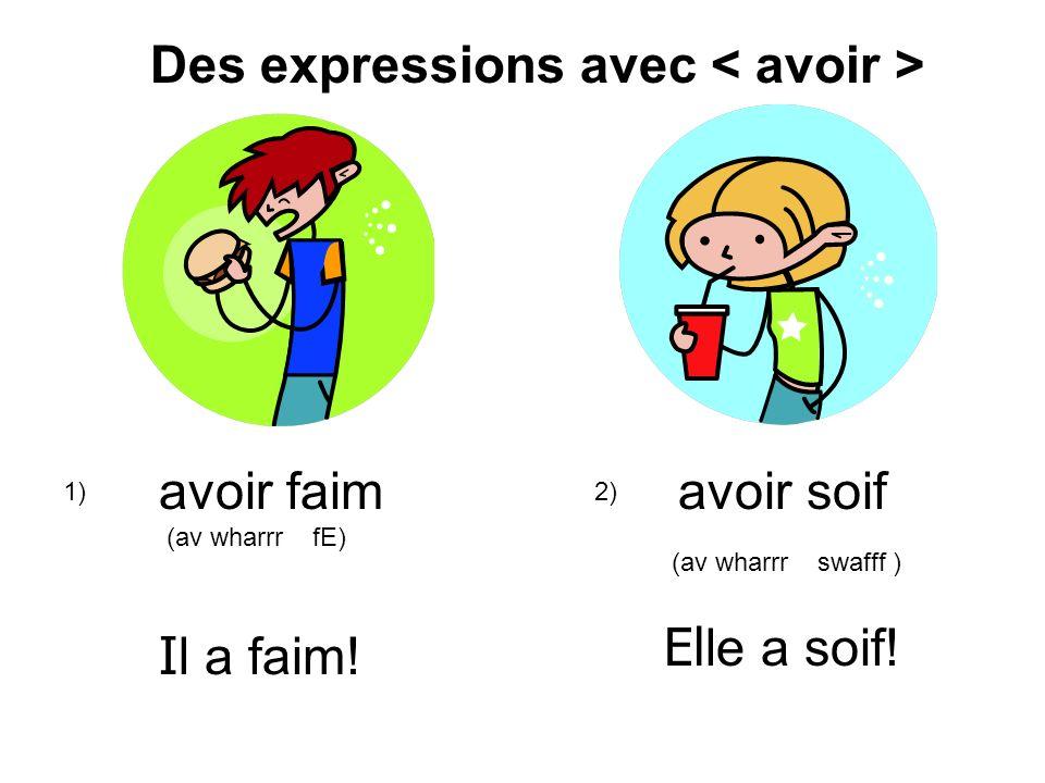 Des expressions avec < avoir >