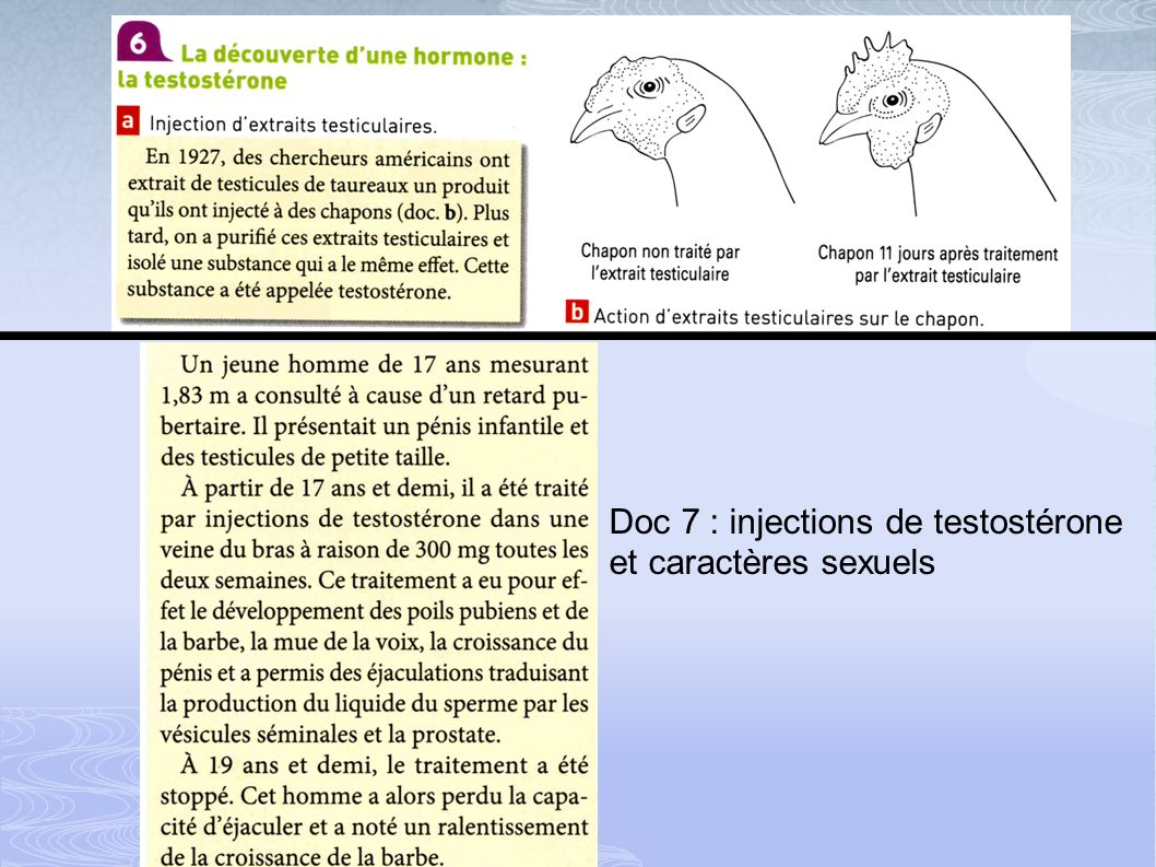 Doc 7 : injections de testostérone