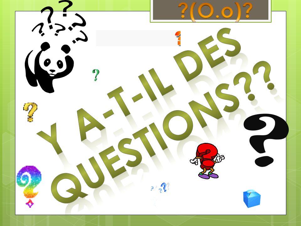 (O.o) Y a-t-il des questions
