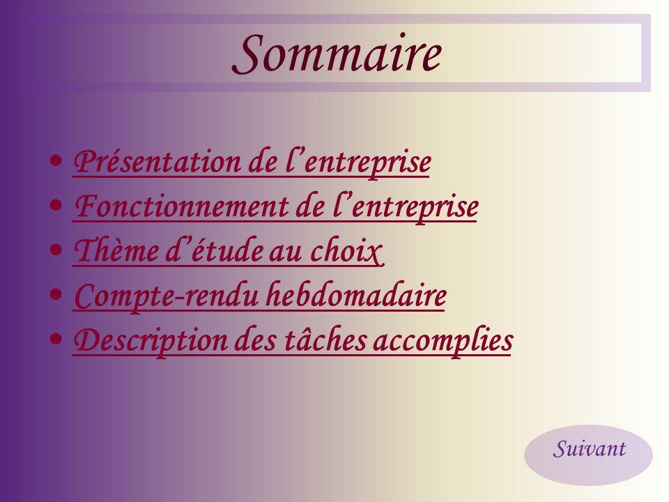 Sommaire • Présentation de l'entreprise