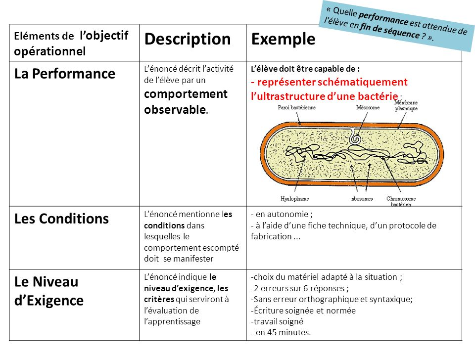 Description Exemple La Performance Les Conditions Le Niveau d'Exigence
