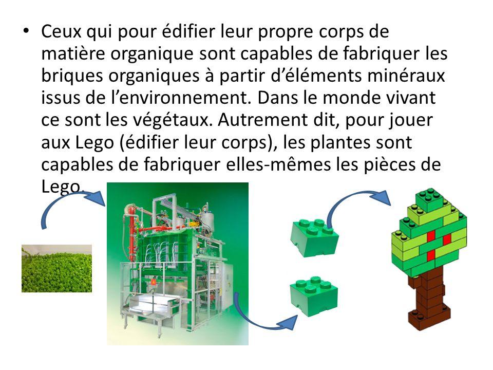 Ceux qui pour édifier leur propre corps de matière organique sont capables de fabriquer les briques organiques à partir d'éléments minéraux issus de l'environnement.