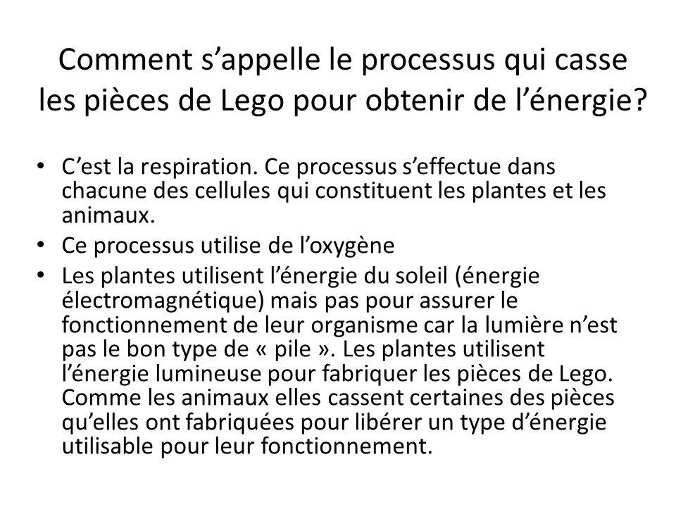 Comment s'appelle le processus qui casse les pièces de Lego pour obtenir de l'énergie