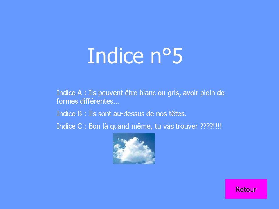 Indice n°5 Indice A : Ils peuvent être blanc ou gris, avoir plein de formes différentes… Indice B : Ils sont au-dessus de nos têtes.