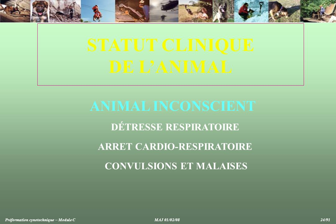 STATUT CLINIQUE DE L'ANIMAL