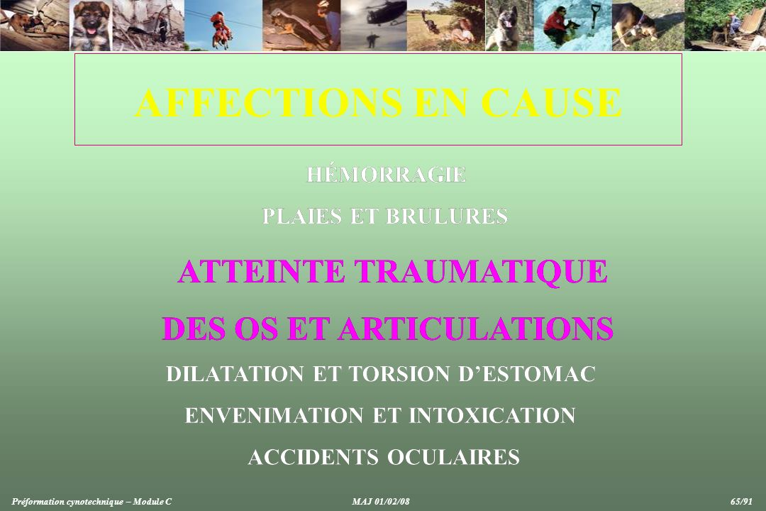 AFFECTIONS EN CAUSE ATTEINTE TRAUMATIQUE ATTEINTE TRAUMATIQUE