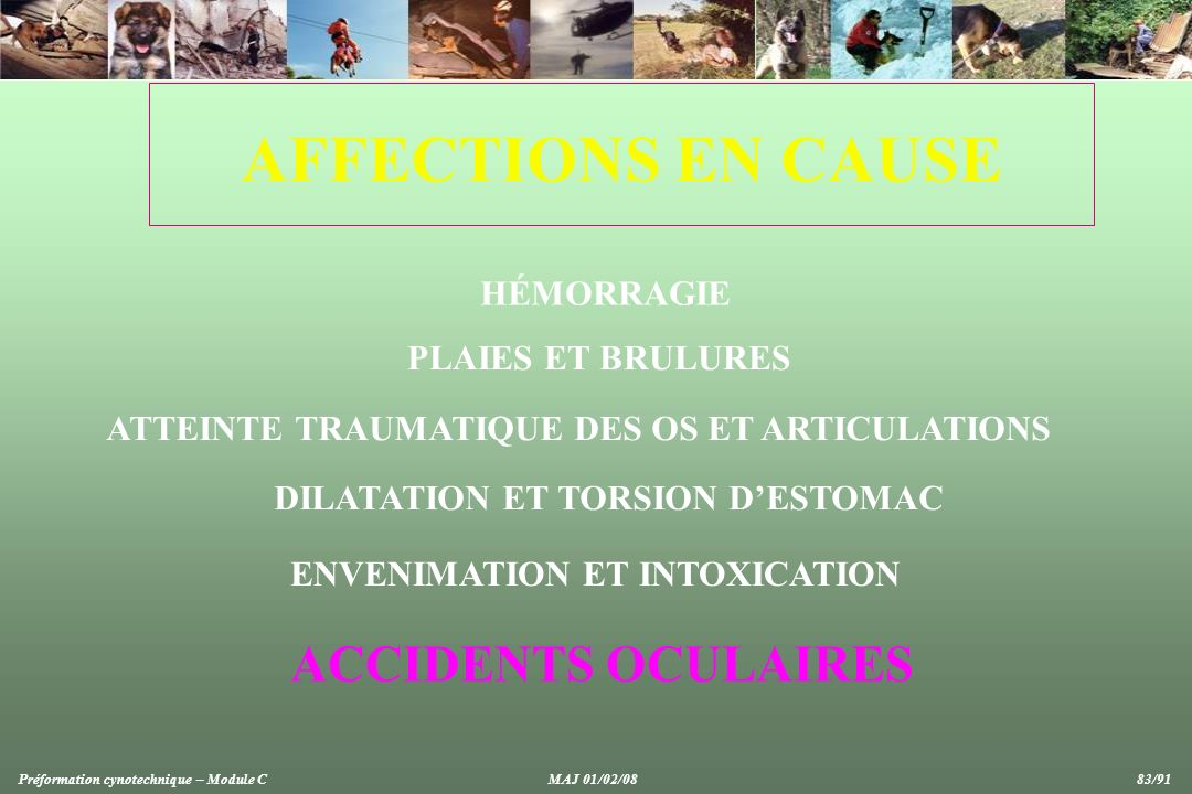 AFFECTIONS EN CAUSE ACCIDENTS OCULAIRES HÉMORRAGIE PLAIES ET BRULURES