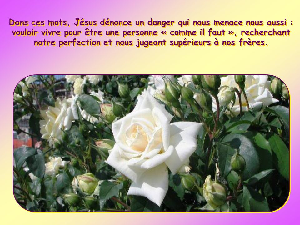 Dans ces mots, Jésus dénonce un danger qui nous menace nous aussi : vouloir vivre pour être une personne « comme il faut », recherchant notre perfection et nous jugeant supérieurs à nos frères.