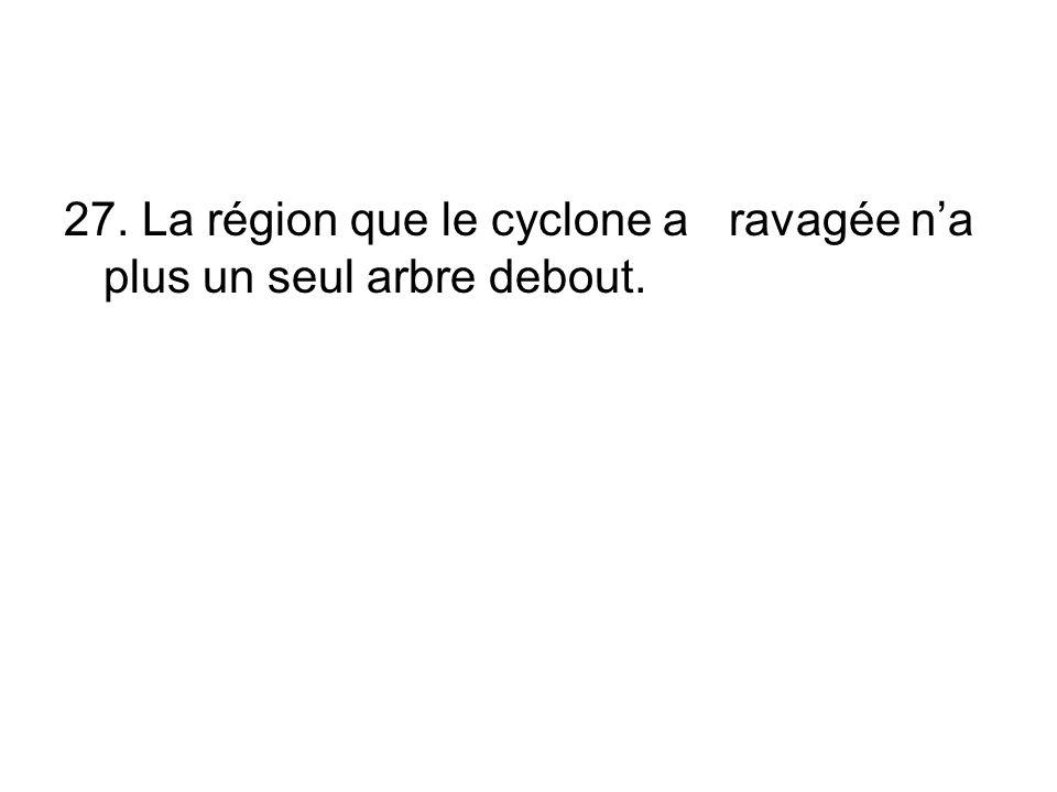 27. La région que le cyclone a ravagée n'a plus un seul arbre debout.