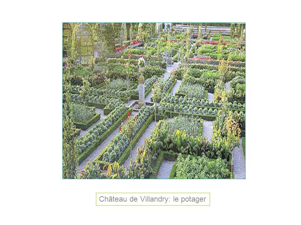 Château de Villandry: le potager