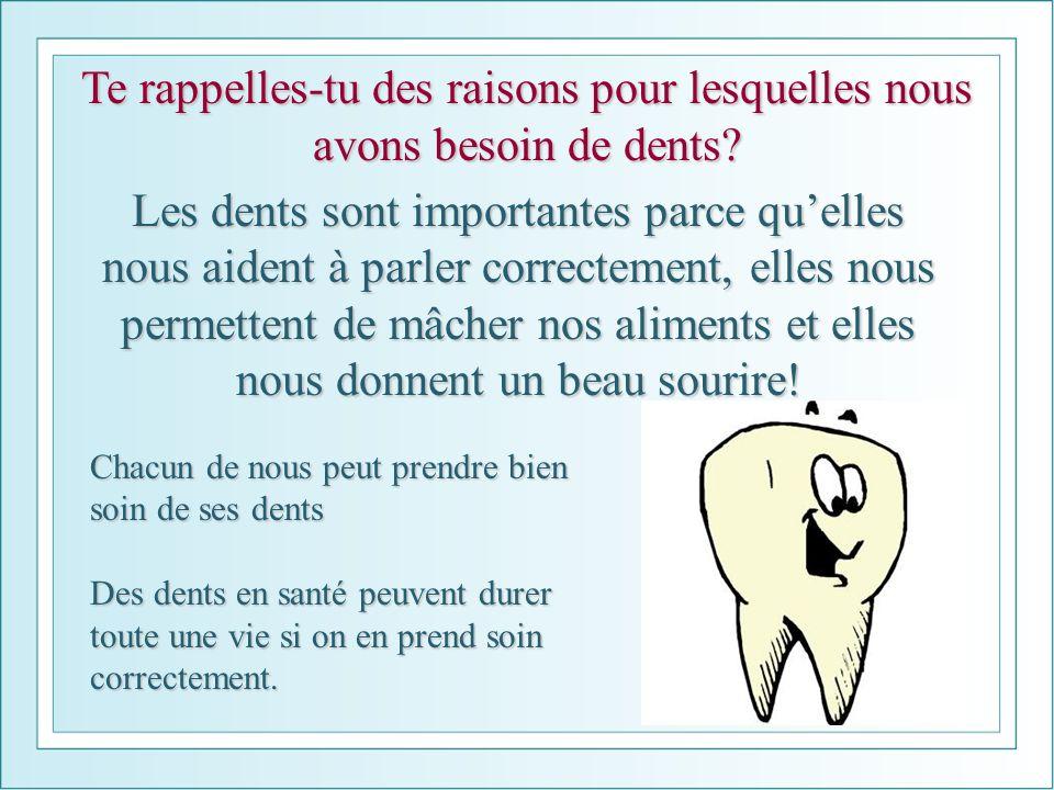 Te rappelles-tu des raisons pour lesquelles nous avons besoin de dents