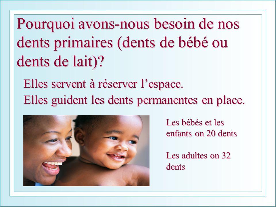 Pourquoi avons-nous besoin de nos dents primaires (dents de bébé ou dents de lait)