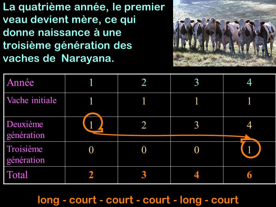 long - court - court - court - long - court