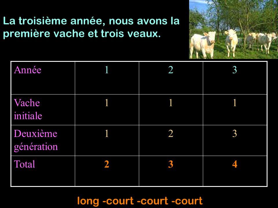 La troisième année, nous avons la première vache et trois veaux.