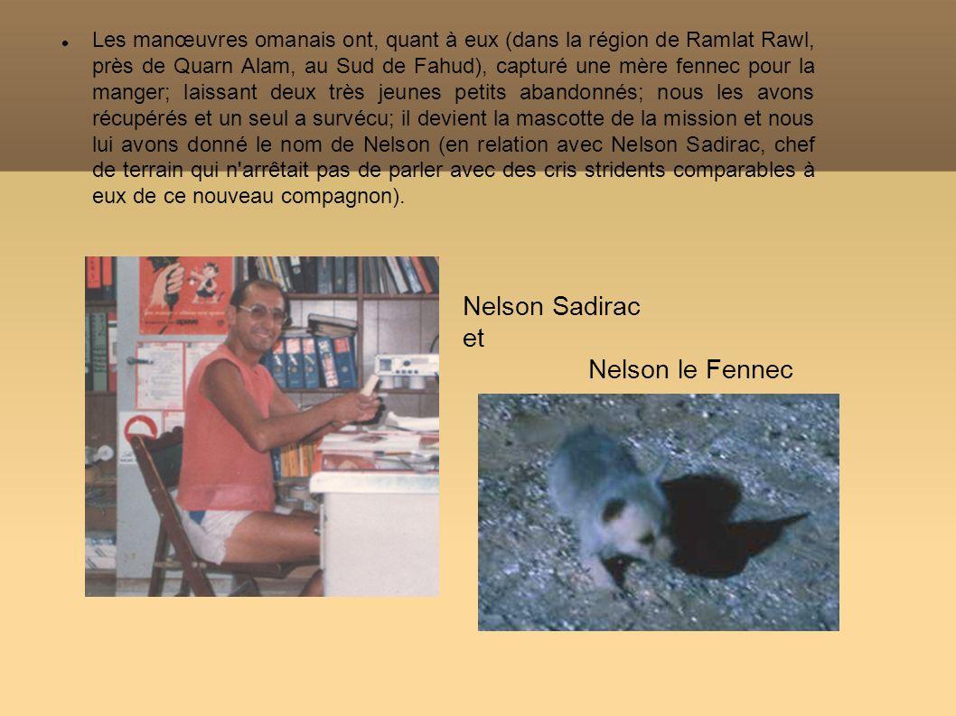 Nelson Sadirac et Nelson le Fennec