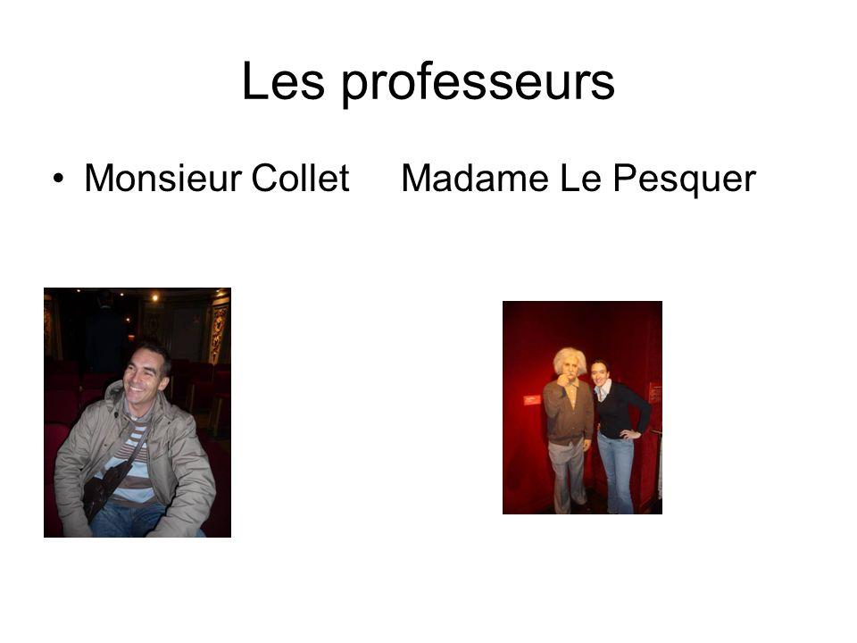 Les professeurs Monsieur Collet Madame Le Pesquer